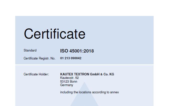 ISO 45001 EN Global Picture