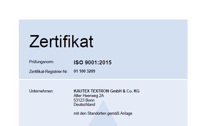 ISO 9001 Hauptzertifikat Bild