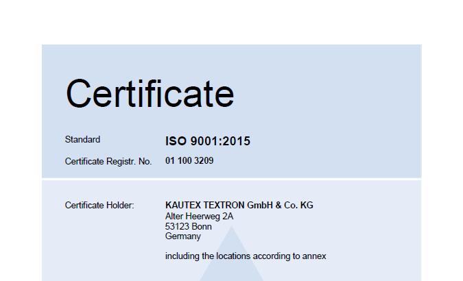 ISO 9001 Main Certificate Bild